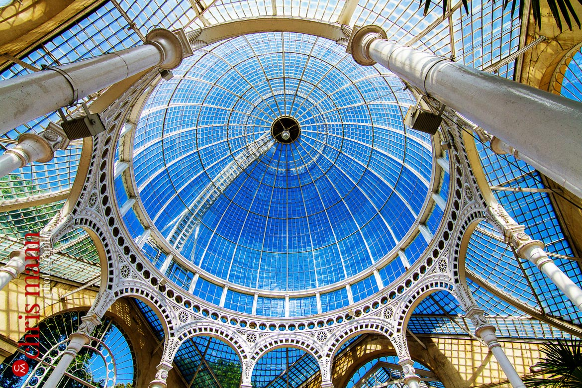 glass roof of Great Conservatory Syon Park London
