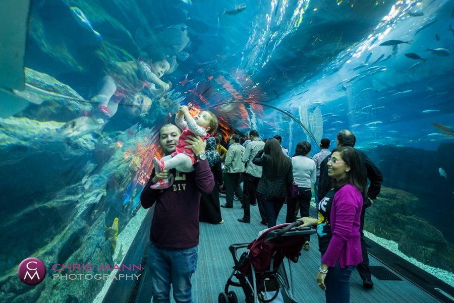 Through the tunnel at Dubai Aquarium