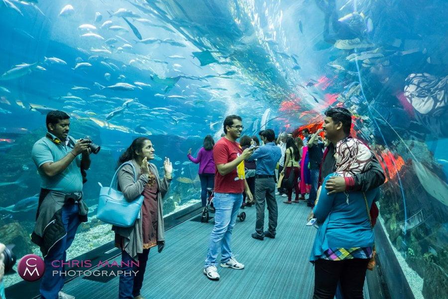 family photo in tunnel Dubai Aquarium