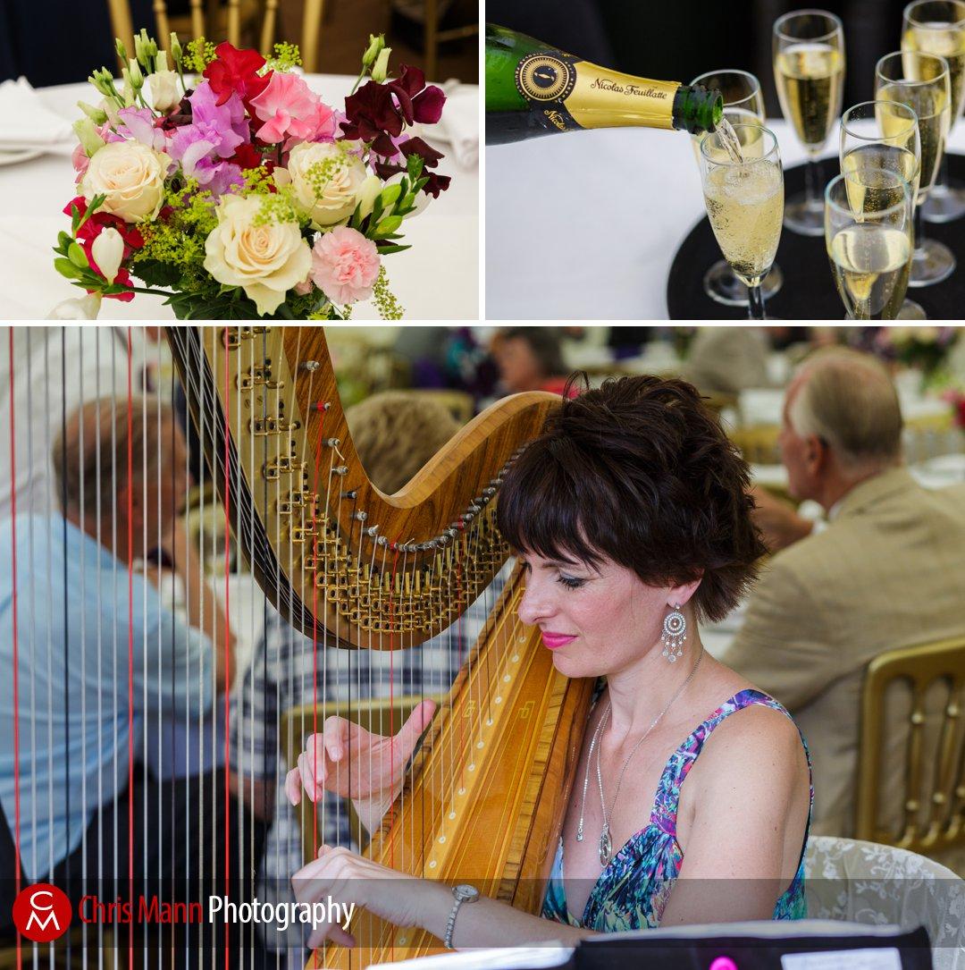 harpist performs at wedding reception