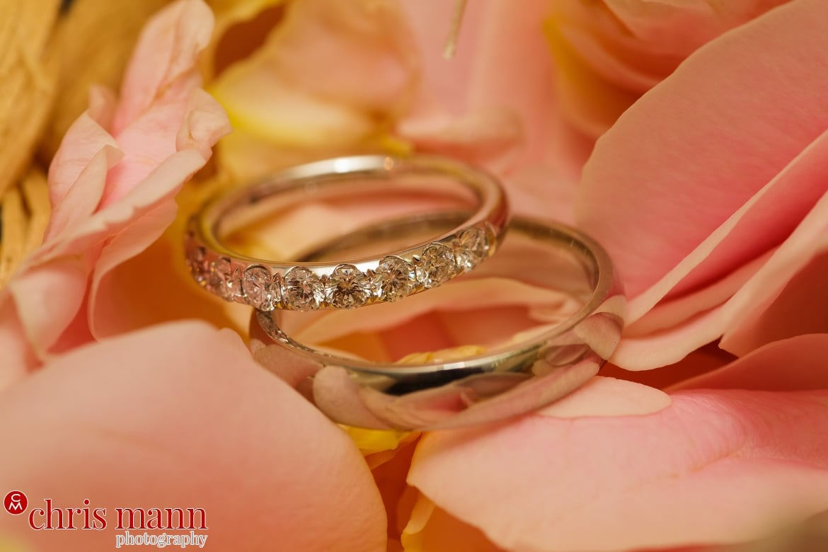 close up of wedding rings resting on rose petals